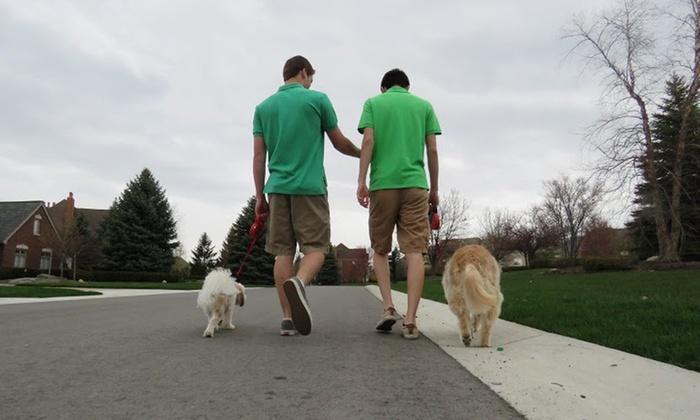 Nick N Karl's - Detroit: Two Dog Walks from Nick n Karl's (50% Off)