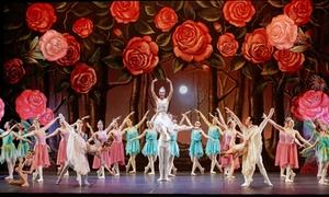 CENTRO ARTE DANZA: 10 o 20 lezioni di danza a scelta, per bambini e adulti, presso il centro Arte Danza (sconto fino a 85%)