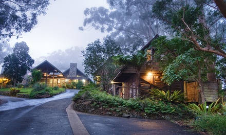 Gold Coast Hinterland: Up to 5 Night Escape for Two People with Breakfast and Late Check Out at Binna Burra Lodge