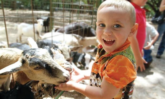 Green Meadows Farm - Kissimmee: Petting-Farm Visit for One or for Two Kids at Green Meadows Farm (Up to 48% Off)