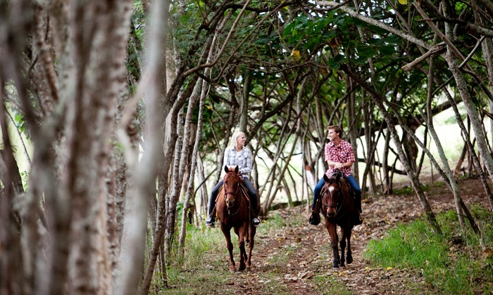 Gunstock Ranch - Koolauloa: Horseback Trail Ride or Sunset Trail Ride, or a Pony and Pool Party at Gunstock Ranch (Up to 60% Off)