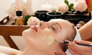 Liz at Plush Spa: $80 for $160 Worth of Services — Liz at Plush Spa