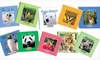 Zoobooks Kids' Book Sets: Zoobooks Kids' Book Sets. Multiple Sets Available.