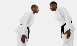Tinguinha Brazilian Jiu-Jitsu Academy: One- or Two-Month Adult Membership at Tinguinha Brazilian Jiu-Jitsu Academy (Up to 80% Off)