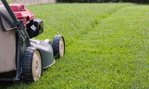 Moving Mountains Mowing: $40 for $85 Groupon — Moving Mountains Mowing