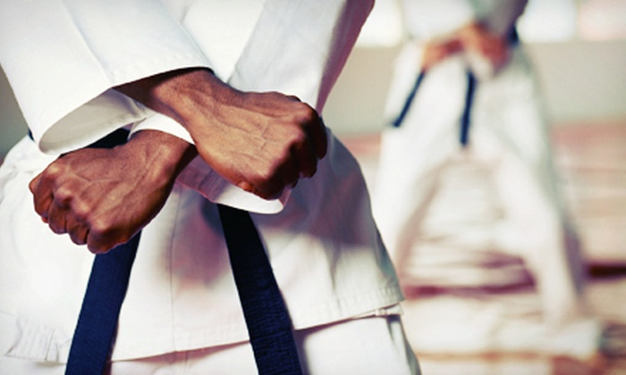 Innovative Martial Arts - Chalmers: One or Two Months of Unlimited Classes at Innovative Martial Arts and Boot Camp (Up to 68% Off). Eight Options Available.