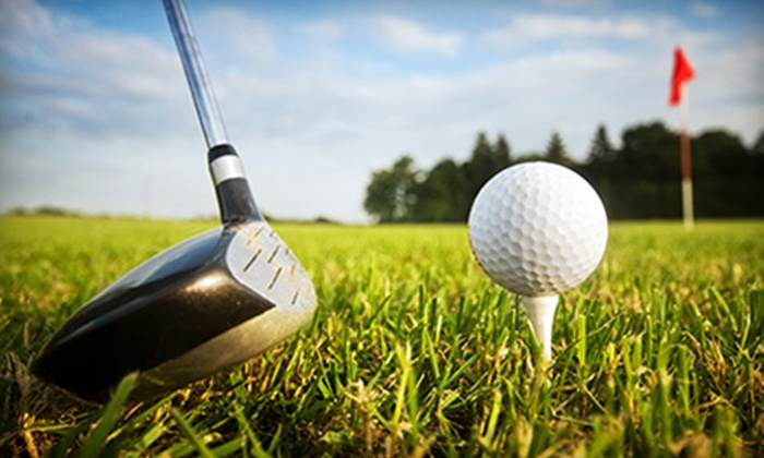 Woodbine Golf Course - Homer Glen: 18-Hole Round of Golf with Cart Rental for Two or Four at Woodbine Golf Course (Up to 51% Off)