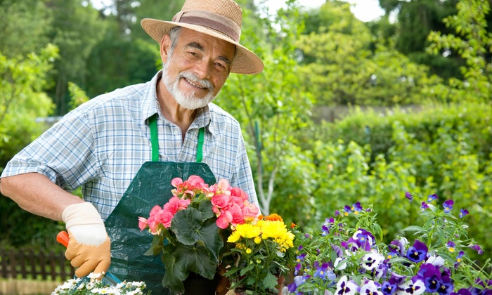 Lilac Landscape Designs - Long Island: $193 for $350 Worth of Gardening Services — LILAC Long Island Landscape designs And Concepts