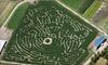 Bella Organic & Portland Pumpkin Farm - Sauvie Island: Pumpkin Farm and Oregon Ducks–Themed Corn Maze or a Haunted Corn Maze for Two to Bella Organic Farm (Half Off)