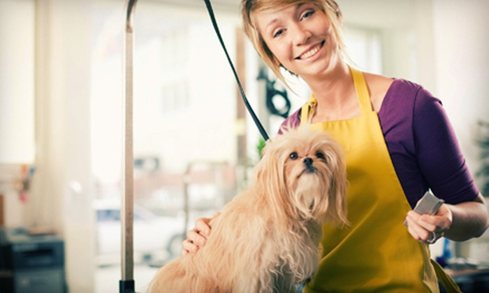 Canine Couture - Kingsville: $25 for a Grooming Package for Dogs Up to 60 Pounds with Bath and Nail Trim at Canine Couture (Up to a $60 Value)