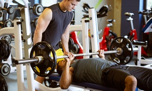 Hard Rock Fitness: One, Three, or Six 60-Minute Personal-Training Sessions at Hard Rock Fitness (Up to 69% Off)
