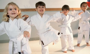 Side Kicks Family Karate: One 1-on-1 Martial Arts Lesson with Four or Eight Classes at Side Kicks Family Karate (Up to 61% Off)