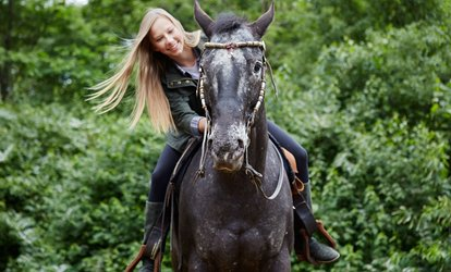 image for 30- or 60-Minute Horse Riding Lesson for One or Two at Unicorn Equestrian