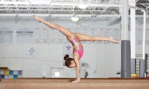 Flight School Gymnastics: Daytime Program for Kids Ages 3-5 and Four Parents' Night Out Passes at Flight School Gymnastics (Up to 64% Off)