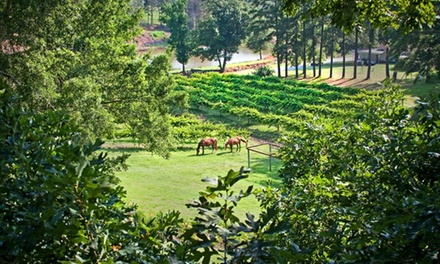 Winery Tour with Tastings, Souvenir Glasses, and Bottles for Two or Four at Treehouse Vineyards (Up to 61% Off)
