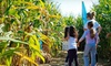 Harbes Family Farm & Vineyard - Laurel: $9 for Robin Hood Corn-Maze Outing for Two at Harbes Family Farm & Vineyard ($19.90 Value)