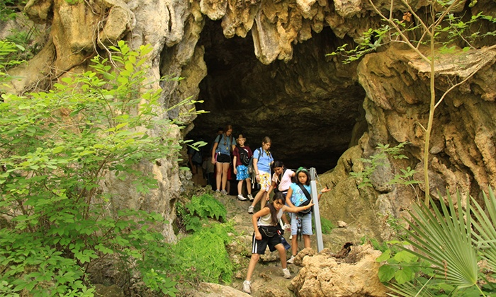 Westcave Preserve a part of Westcave Outdoor Discovery Center - Westcave Preserve: Hiking Tours from Westcave Outdoor Discovery Center (Up to 44% Off). Three Options Available.