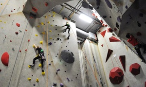 Ibex Climbing Gym: Kids' Summer or Kinder Camp at Ibex Climbing Gym (Up to63% Off). 18 Options Available.