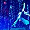Up to 44% Off Cirque Italia