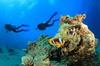 Learn Scuba With Paul-Davie - Riverstone: Scuba-Diving Certification at Learn Scuba With Paul (50% Off)