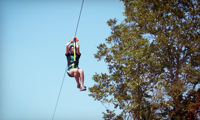 Cedar Mountain Lodge - Scurry: Zipline Tour for One or Two or Zipline Package with Campfire and Hayride at Cedar Mountain Lodge (Up to 52% Off)