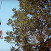 Up to 52% Off Zipline Tours