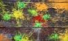Bing Field Paintball & Airsoft Park - Bing Field Paintball and Airsoft Park: $25 Toward Paintball and Airsoft Games