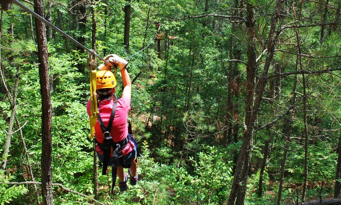 Daredevil Ziplines - Cave Spring: 90-Minute Zipline Tour for One or Dare Ya! Ride for Two at Daredevil Ziplines (Up to 54% Off)