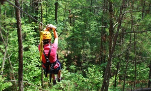 Daredevil Ziplines: 90-Minute Zipline Tour for One or Dare Ya! Ride for Two at Daredevil Ziplines (Up to 62% Off)