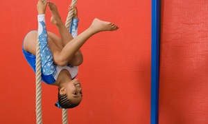 W.E.Gymnastics: One-Month Recreational-Gymnastics Membership or One-Month Afterschool Program at W.E.Gymnastics (Up to 56% Off)