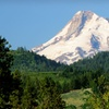 Stay at Best Western Mt. Hood Inn in Oregon