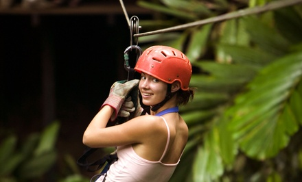 Four Zipline Rides for One or Two People or Daredevil Package at Woodbury Ski Area (Up to 53% Off)