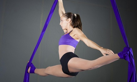 One Month of Aerial Fitness Classes at SConnection Aerial Arts (70% Off)