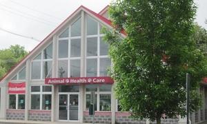 Animal Health Care of Marlboro: Veterinary, Boarding, or Grooming Services at Animal Health Care of Marlboro (Up to 51% Off). Eight Options Available.