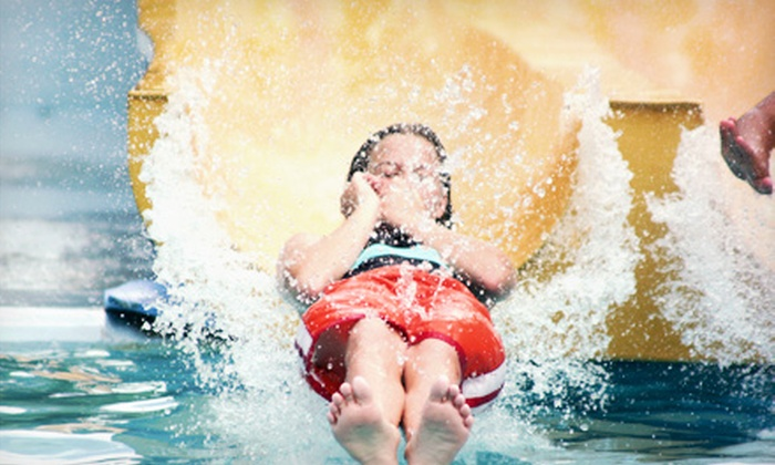 The Springs Aquatic Center - Springs Aquatic Center: Four Water-Park Visits or Moonglow Monday Madness Teen-Party Entry on August 5 at The Springs Aquatic Center (Half Off)