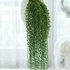 Hängepflanzen fürs Zimmer