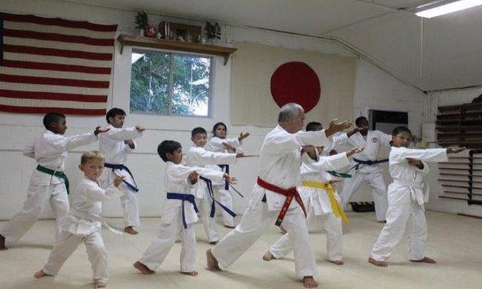 Japan Karate & Judo Center - Owings Mills: $56 for $199 Worth of Martial Arts — Japan Karate Center