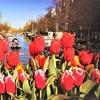 ✈ Amsterdam: volo a/r + fino a 4 notti in hotel 4*. Tasse incluse