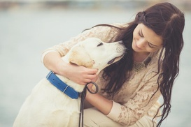 Five&Two Pet Clinic: $69 for $138 Worth of Veterinary Services — Five&Two Pet Clinic