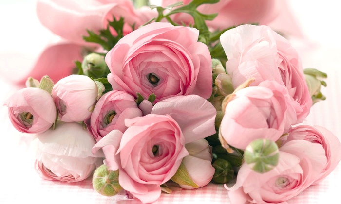 Angel's Petals - Paradise: $19.99 for $40 Worth of Plant and Flower Arrangements at Angel's Petals