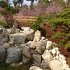 Up to 51% Japanese Garden Membership or Admission