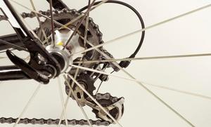 Workhorse Cycle: Bike Repair at Workhorse Cycle (40% Off)