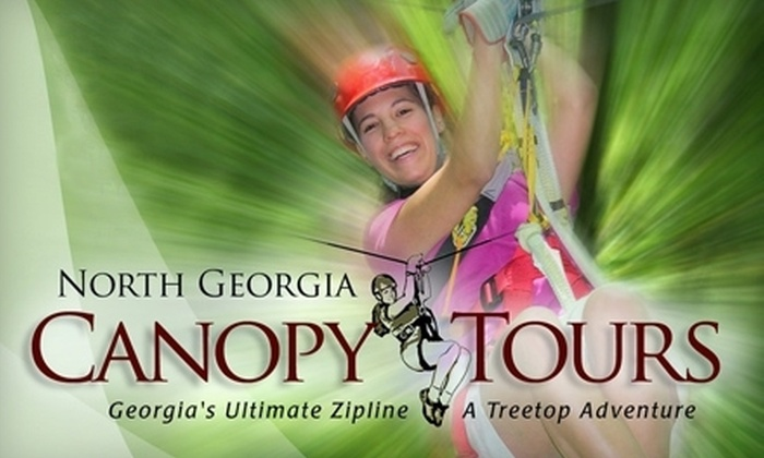 North Georgia Canopy Tours - Lula: Two-Hour Zipline for Five with Teepee Stay or Three-Hour Zipline for One from North Georgia Canopy Tours (Up to 59% Off)