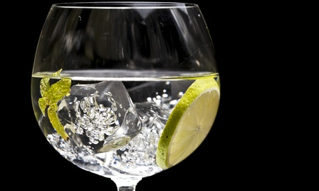 Curso de coctelería gin tonic para 2 o 4 personas desde 24,95 € en Cocteleros Viajeros
