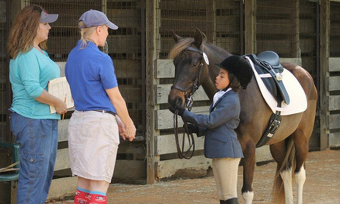 Showcase Equestrian Center - Gray's Creek Association: One Day or One Week of Horseback-Riding Holiday Camp at Showcase Equestrian Center in Eads (Half Off)