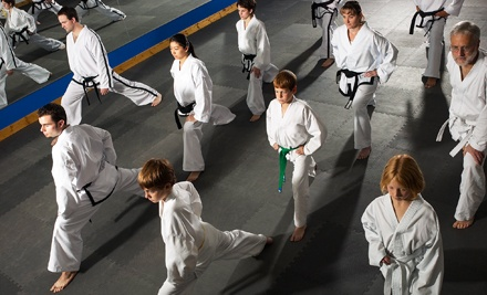 One or Three Months of Unlimited Karate Classes for One or Up to Four at Spa 23 Health and Racquet Club (Up to 93% Off)
