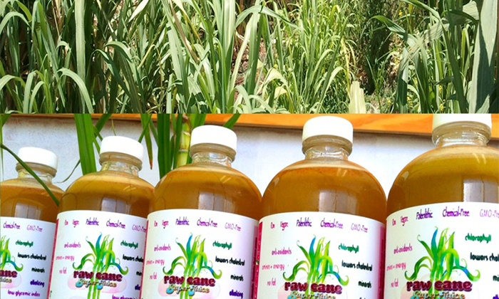 """Raw Cane Superjuice - Hollywood: Five- or Seven-Day """"Detox Elixir"""" Juice Cleanse from Raw Cane Superjuice (40% Off)"""