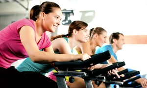 Born To Ride Cycle and Fitness: Five or Ten Spin Classes at Born To Ride Cycle and Fitness (Up to 54% Off)