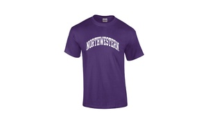 Campus Gear: Gildan, Jerzees, or Hanes Northwestern T-Shirt with In-Store Pickup at Campus Gear (25% Off). Two Options Available.