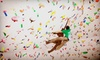 Vital Climbing Gym - Multiple Locations: 10 Rock-Climbing Visits or a One- or Two-Month Membership at Vital Climbing Gym (Up to 66% Off)